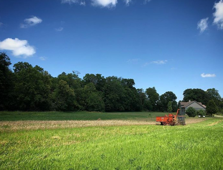 Project to expand supply chains for regional grains to local cafeterias