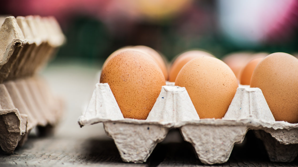 State's Egg Output Drops 5% in September