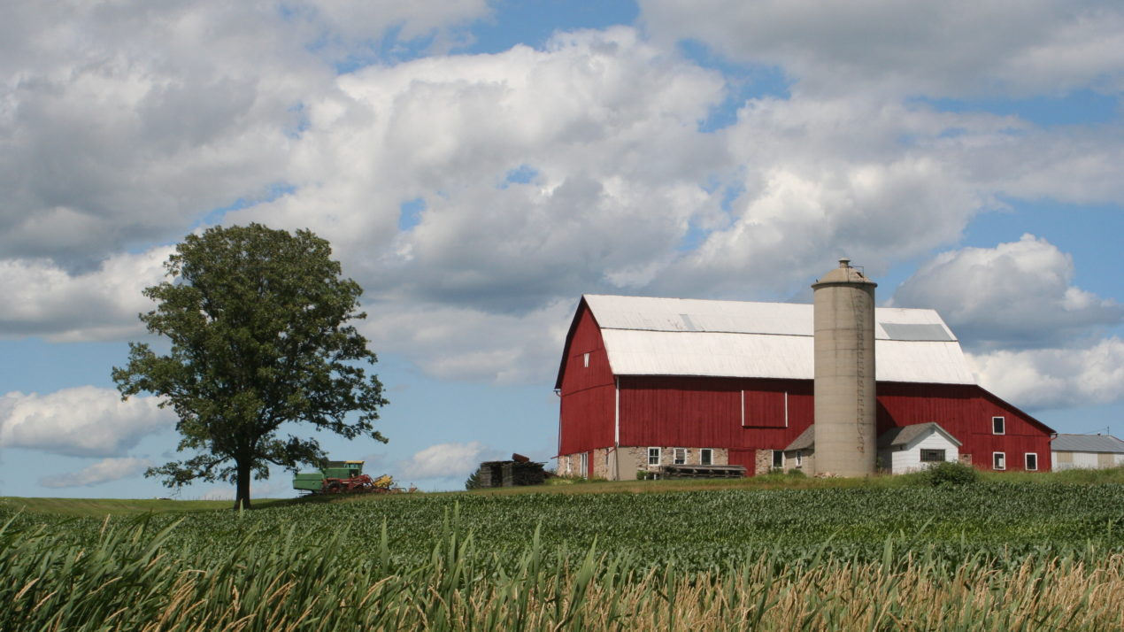 Wisconsin Has Second-Most Organic Farms in the Nation
