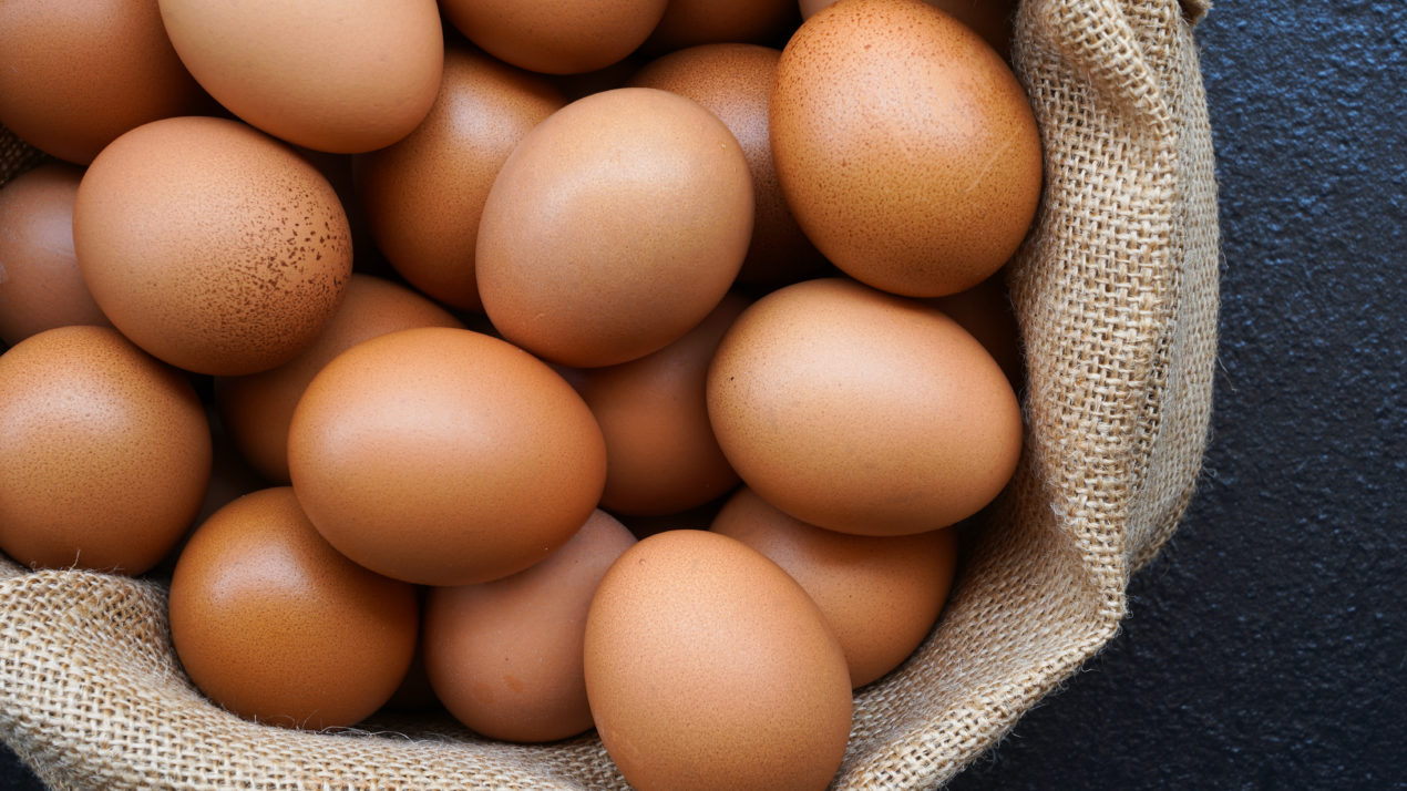 Egg Production Rises 4% in October