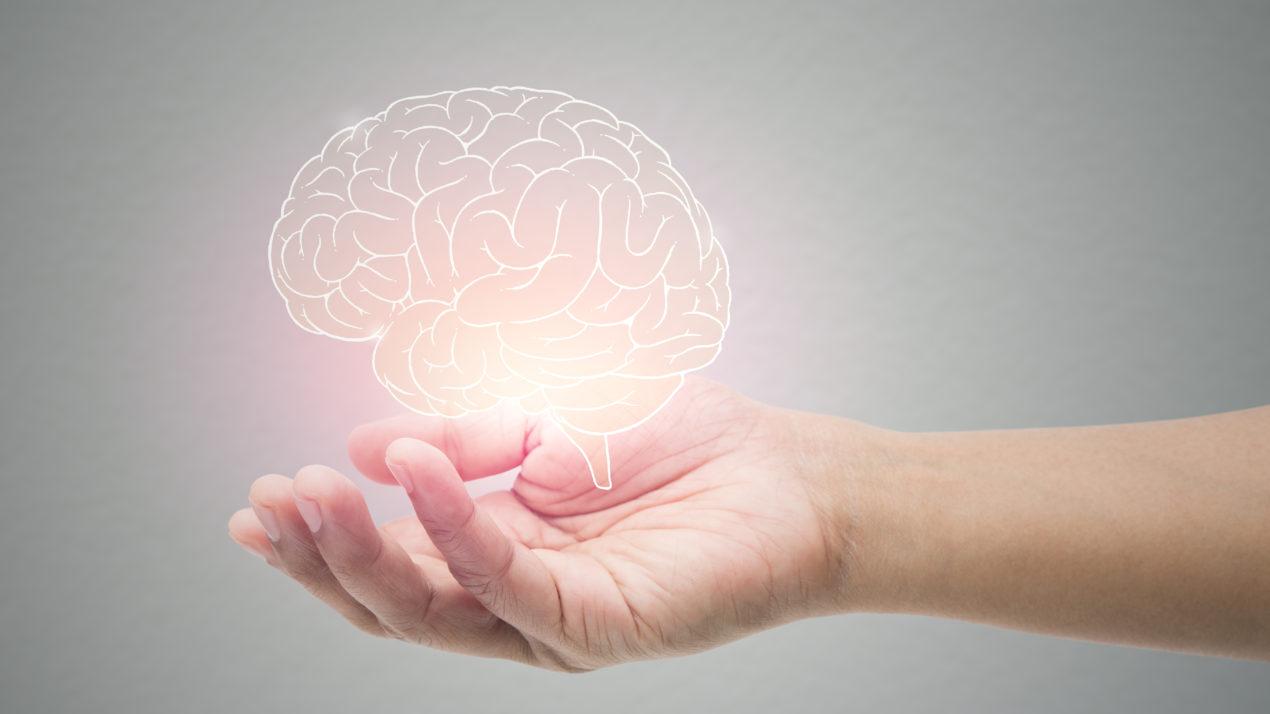 New Program Offers Mental Health, Wellness Resources to Wisconsin Veterinarians