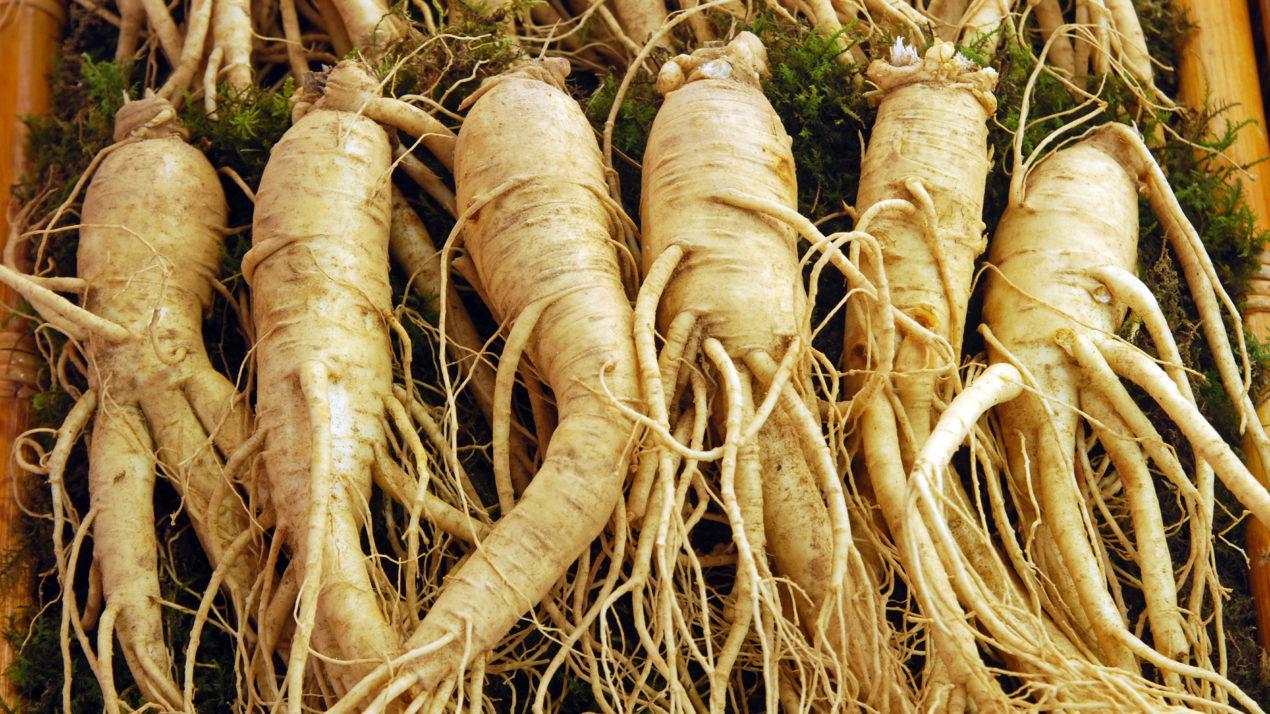 Special Pesticide Registration Proposed for VAPAM® HL Soil Fumigant for Use on Ginseng