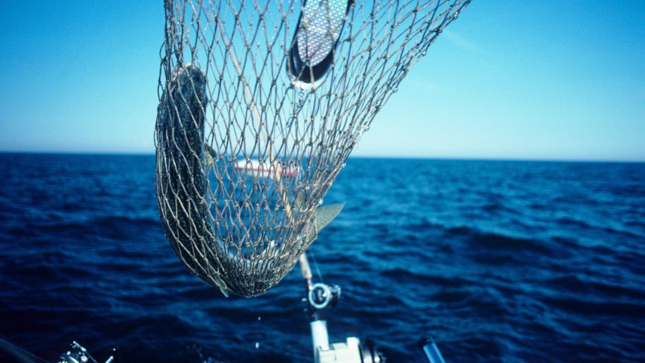 New Lake Trout Bag Limit for Lake Michigan Begins January 1st