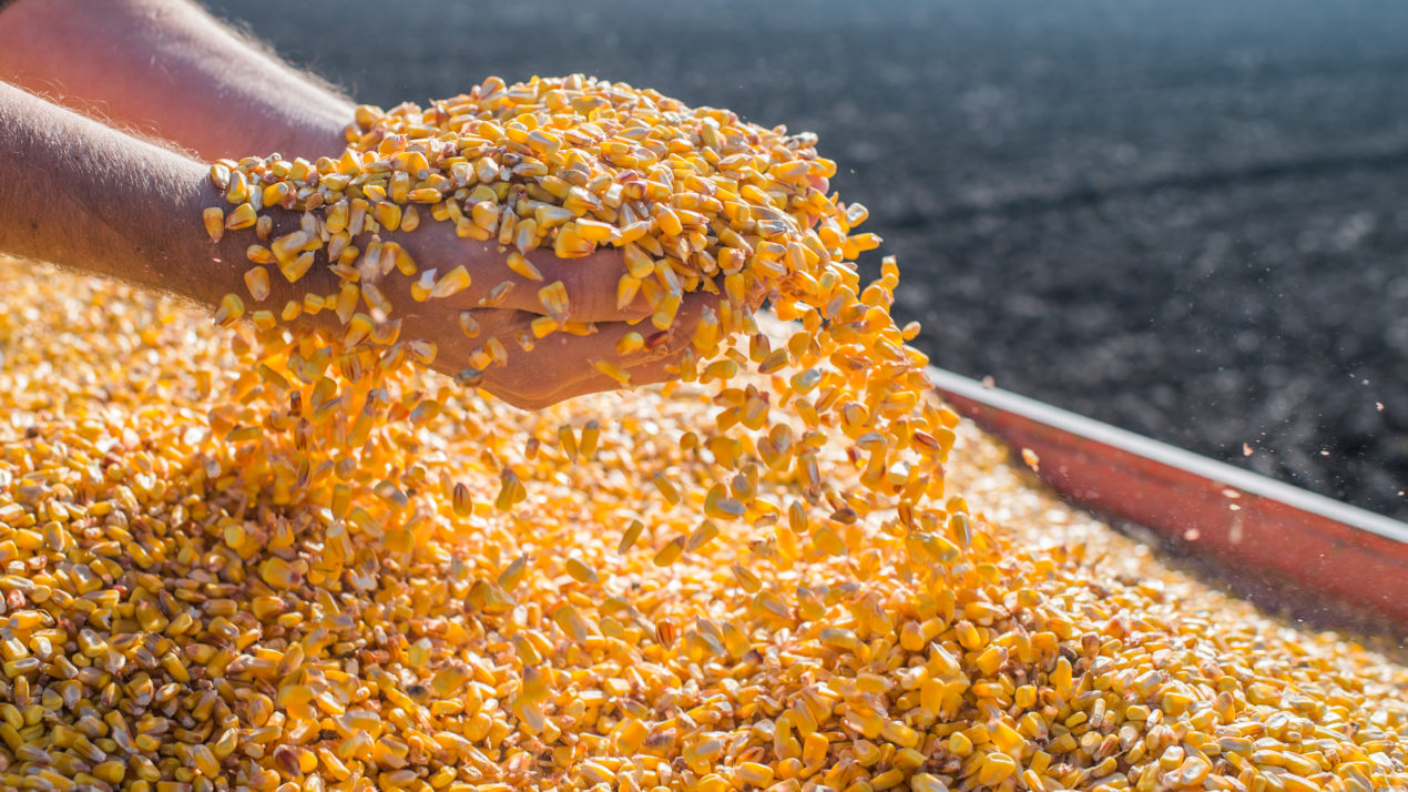 Wisconsin Commodities Show a Mixture of Prices