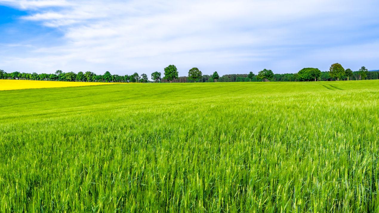 DATCP Designates Over 88,000 Acres as Ag Enterprise Areas