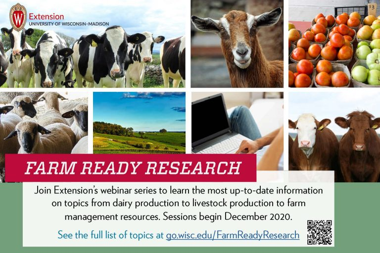 Extension webinars provide information for beef producers and sheep producers