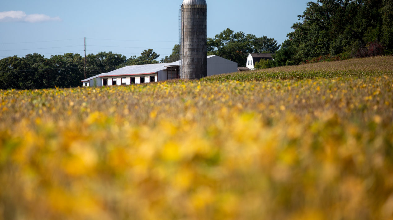 2020 Was A Big Crop Year In Wisconsin