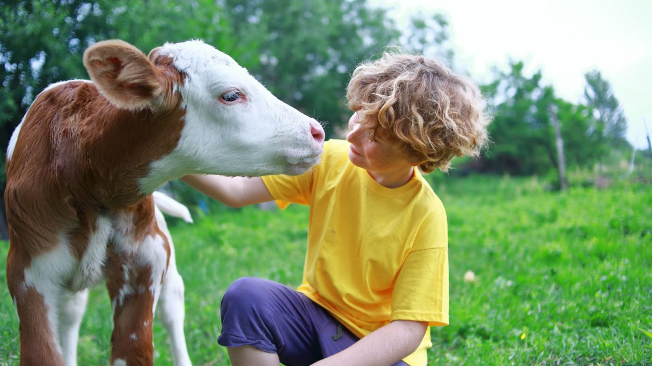Keeping Kids Engaged In Livestock Learning