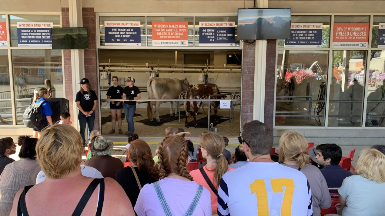 State Fair Milking Demonstration Team Looking for Crew Members