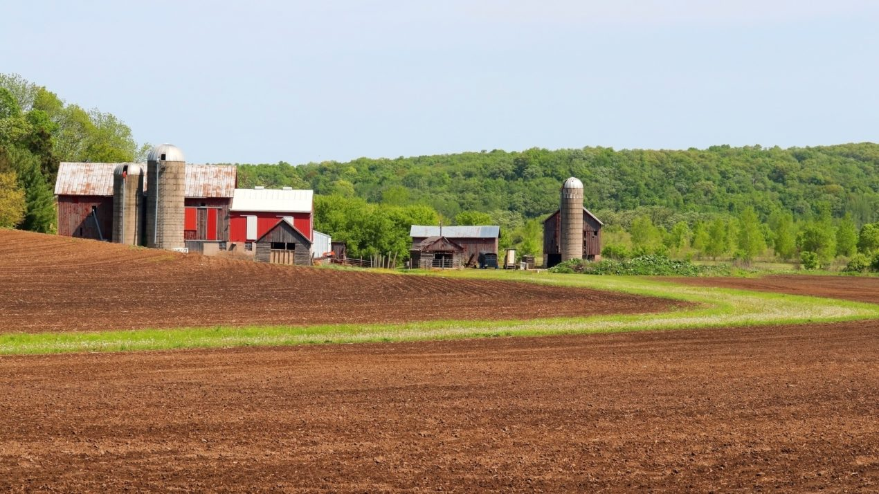 WI Farmers Capitalize On Weather