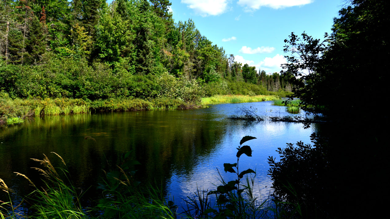 DNR Submits Central Sands Lakes Study Findings