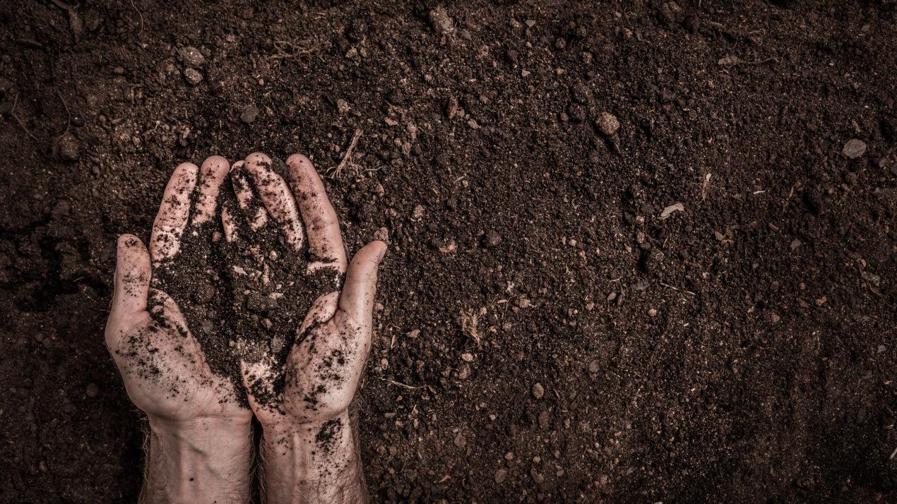 EPA Awards 'Farmer To Farmer' Grant