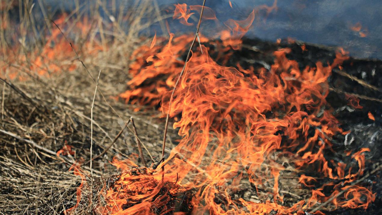 High Fire Danger Across Wisconsin