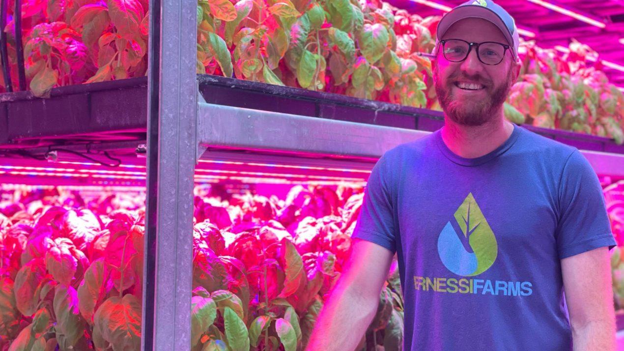 Innovative Way Of Growing Plants