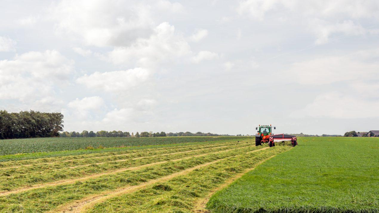 Still Monitoring Potential Crop Damage