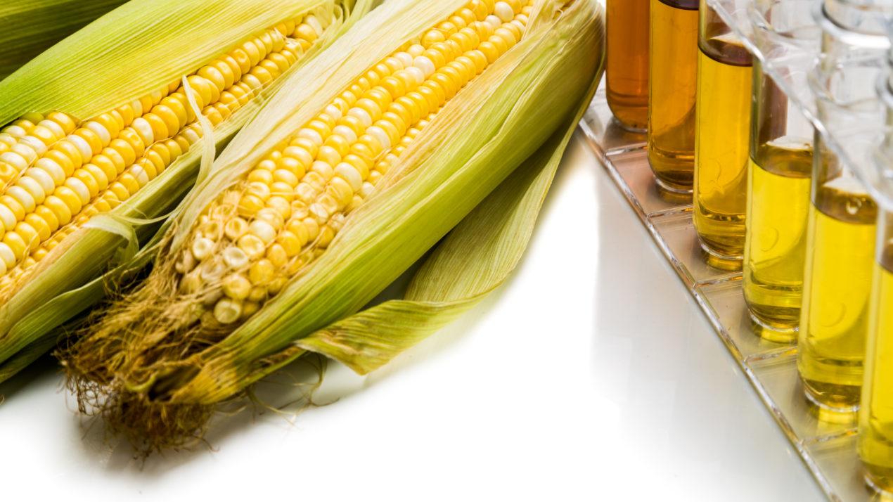 Can Ethanol Reduce Cancer Risk?