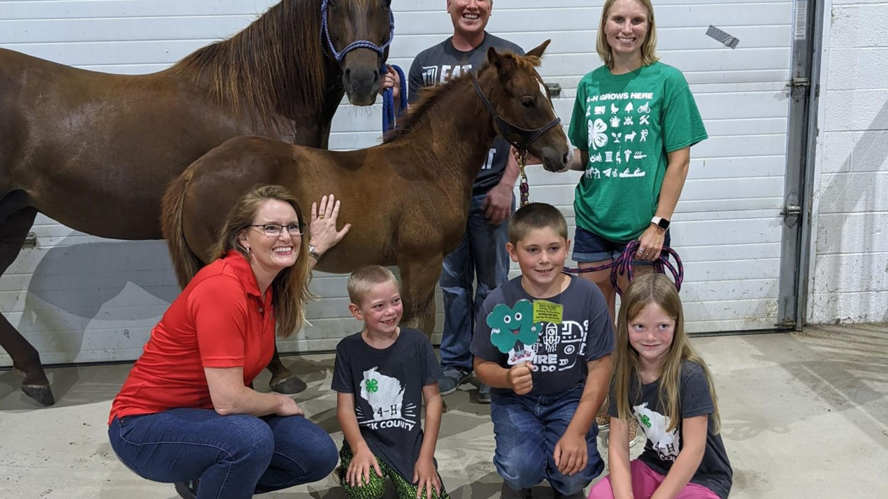 Foaling Around With Wisconsin 4-H