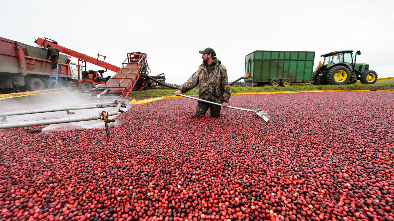 Retaining, Strengthening The Cranberry Workforce