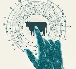 Dairy Expo To Host Tech Spotlight