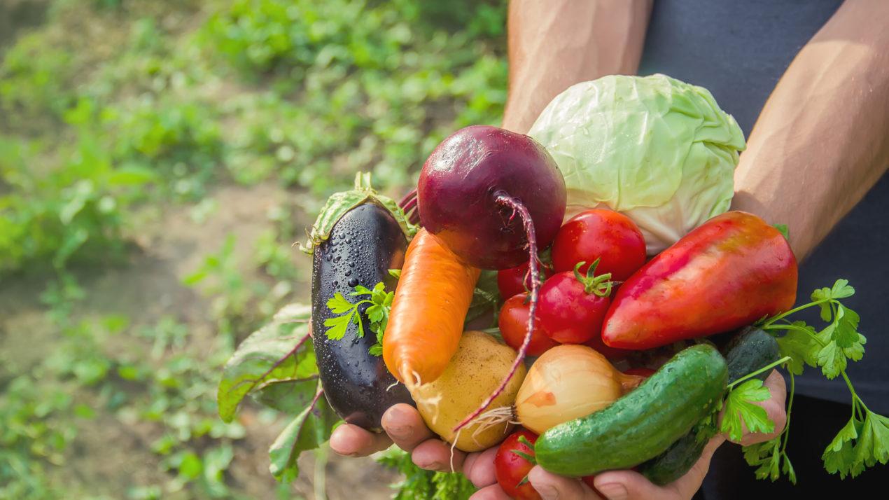 Organic Advisory Council Nominations Due