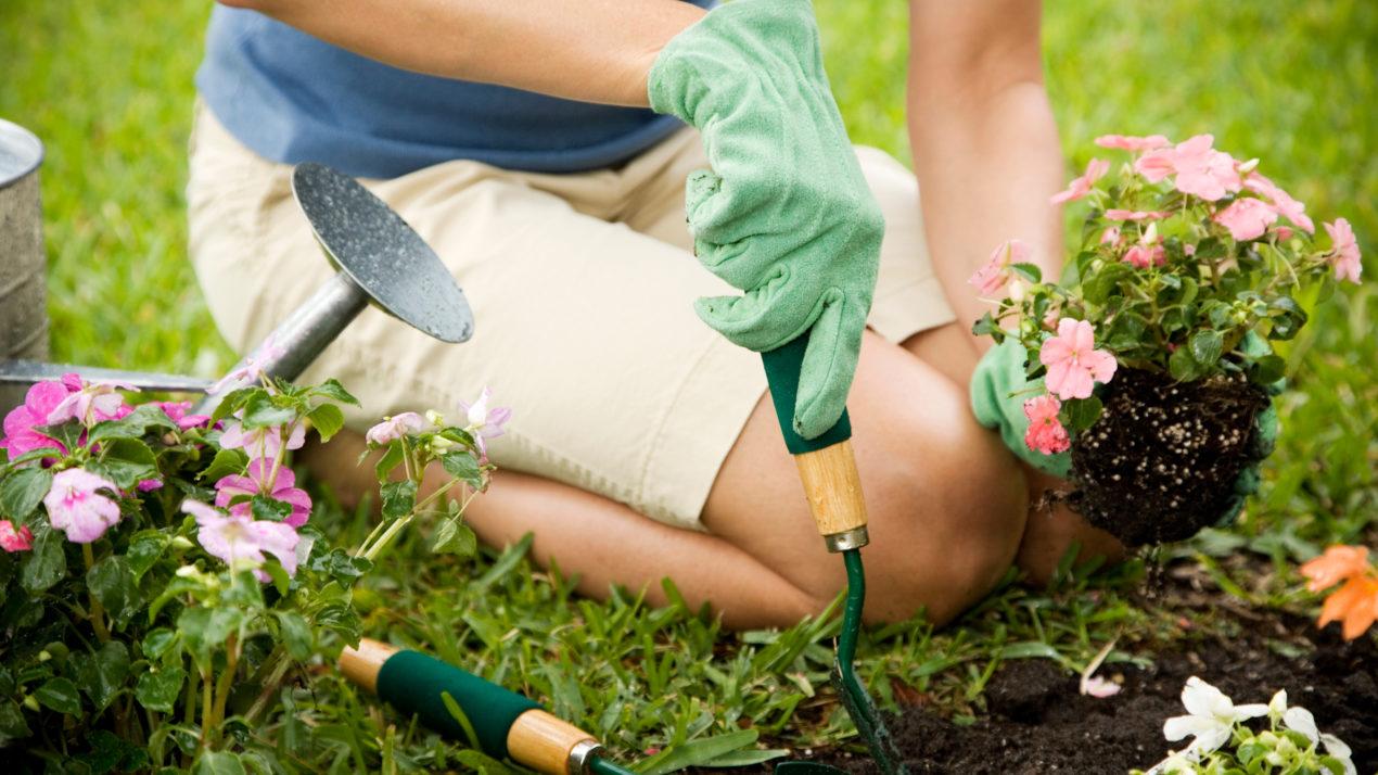 Sheboygan County Looks For Master Gardeners