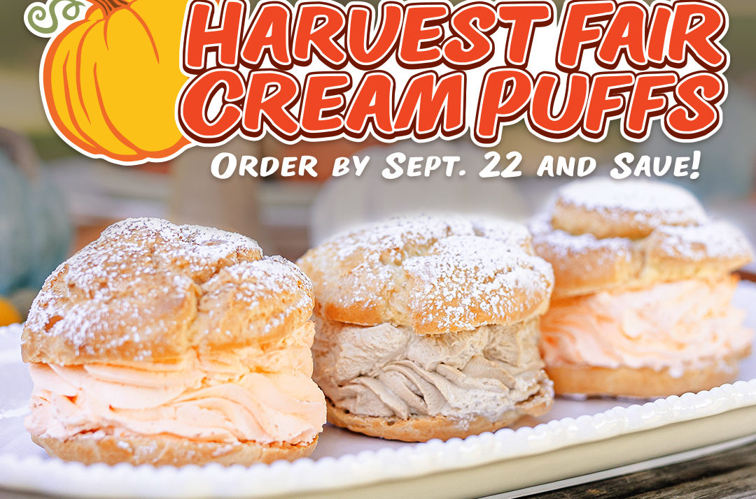 Fall For Cream Puff Flavors